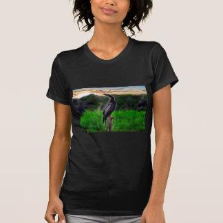 Pássaro T-shirts