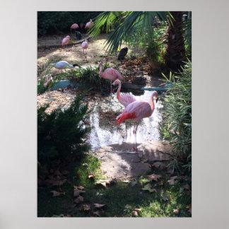 Pássaro tropical da parede do impressão da arte do