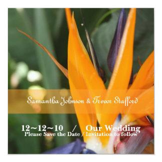 Pássaro tropical de anúncios do casamento do convite quadrado 13.35 x 13.35cm