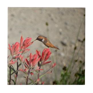 Pássaro vermelho da flor
