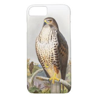 Pássaros comuns de John Gould do Buzzard de Grâ Capa iPhone 7