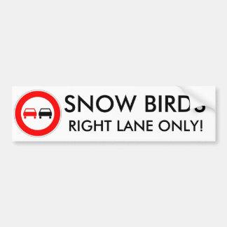 Pássaros da neve adesivo para carro