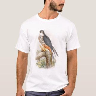 Pássaros de John Gould do falcão do passatempo de Camiseta
