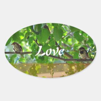 Pássaros do amor em uma etiqueta do ramo de árvore