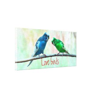 Pássaros do amor que wedding o noivado