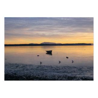 Pássaros e barco de mar cartões de visita