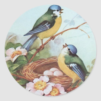 Pássaros em um ninho - etiqueta adesivo em formato redondo