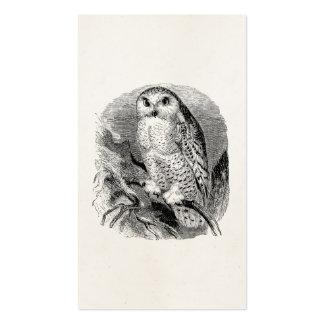 Pássaros personalizados das corujas da coruja do cartão de visita