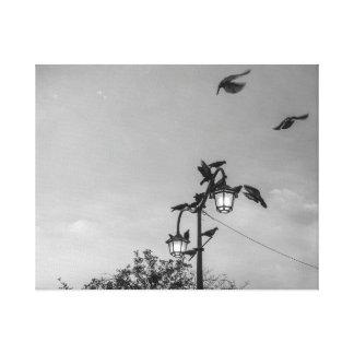"""Pássaros preto e branco de """"Hitchcock"""" - Impressão Em Tela"""