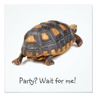 Passeio da tartaruga de Redfoot Convite Quadrado 13.35 X 13.35cm