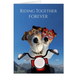 Passeio dos cães em uma motocicleta para o anúncio