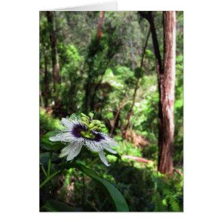 Passiflora selvagem na floresta de chuva havaiana cartão comemorativo