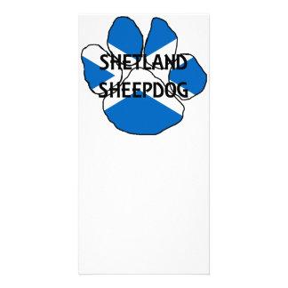 pata da bandeira de Scotland do nome do sheepdog Cartão Com Foto