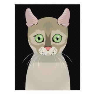 Patas dos desenhos animados do gato de Singapura Cartão Postal