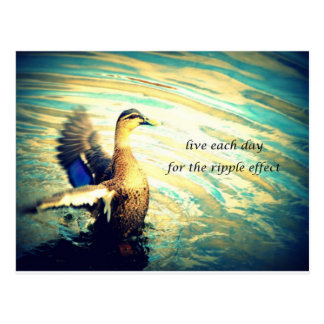 Pato feliz do flapping na água cartão postal
