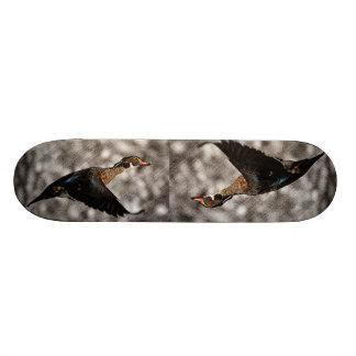 Pato rústico do vôo do vintage do país skates
