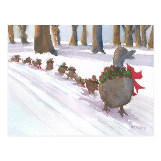 patos em Boston comum durante os feriados de Cartão Postal