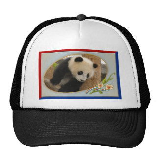 patriotic-panda-013 boné