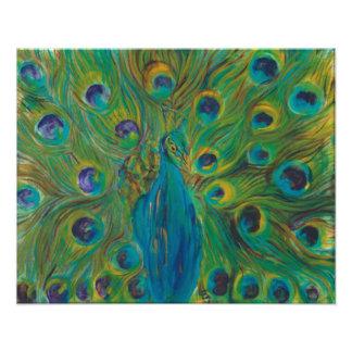Pavão azul e verde, fotos ampliadas do cetim