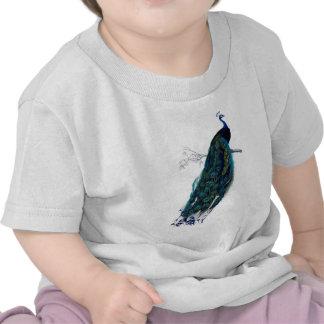 Pavão bonito do vintage, penas bonitas camisetas