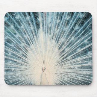 Pavão branco bonito mouse pad