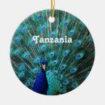 Pavão de Tanzânia Enfeite
