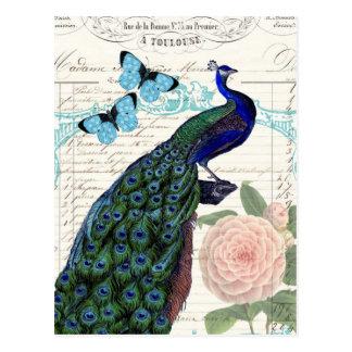 Pavão do vintage na colagem francesa das coisas cartão postal