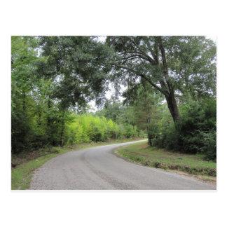 Pavilhão no cartão da fuga de natureza dos pinhos