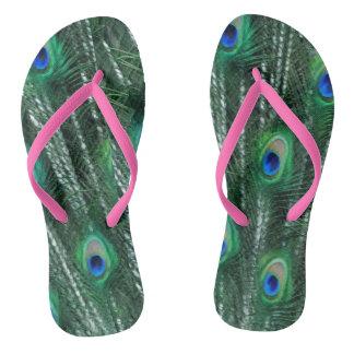 pavões esverdeados que abrem penas chinelos