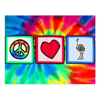 Paz amor avestruzes cartoes postais