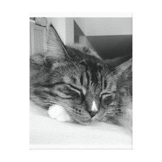 Paz de descanso do gato completamente… pelo healin impressão em tela