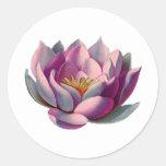Paz l flor de Lotus/lírio de água cor-de-rosa Adesivo
