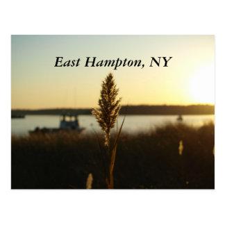 PB089043, Hampton do leste, NY Cartão Postal