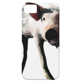 Pé longo do porco feliz engraçado capas para iPhone 5
