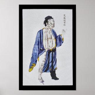 Pé meridiano Yangming do estômago da acupunctura Pôster