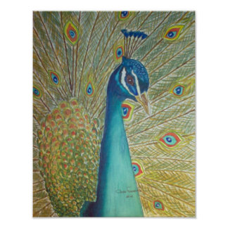 Peacock Pôster