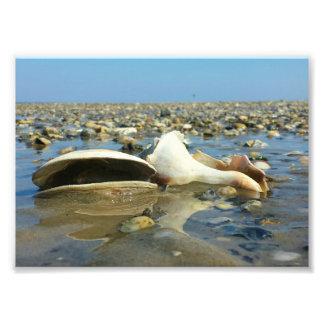 Pebble Beach 3 Impressão De Foto