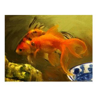 Peixe dourado dois cartão postal