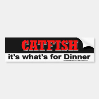 Peixe-gato é o que é para o autocolante no vidro t adesivo para carro