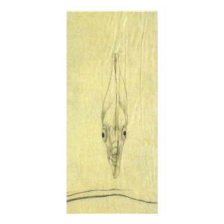 Peixes africanos da palombeta do vintage, 10.16 x 22.86cm panfleto