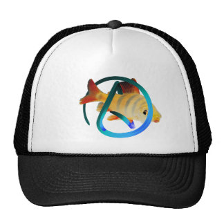 Peixes ateus boné