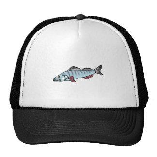 Peixes azuis com dentes boné