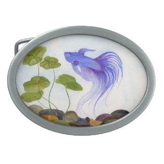 Peixes azuis de Betta