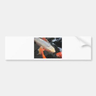 Peixes de Koi Adesivos