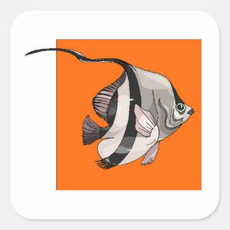 Peixes do anjo adesivo quadrado
