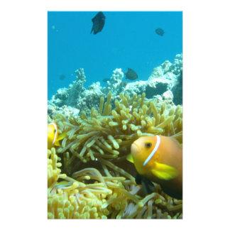 Peixes do aquário panfletos coloridos