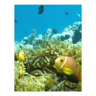 Peixes do aquário modelos de panfleto