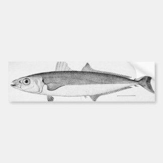 Peixes do charuto adesivo para carro
