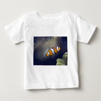 peixes do palhaço, 2 tshirts