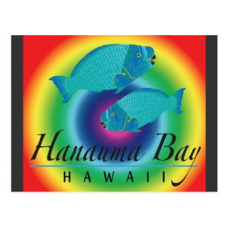 Peixes do papagaio da baía de Hanauma Cartões Postais